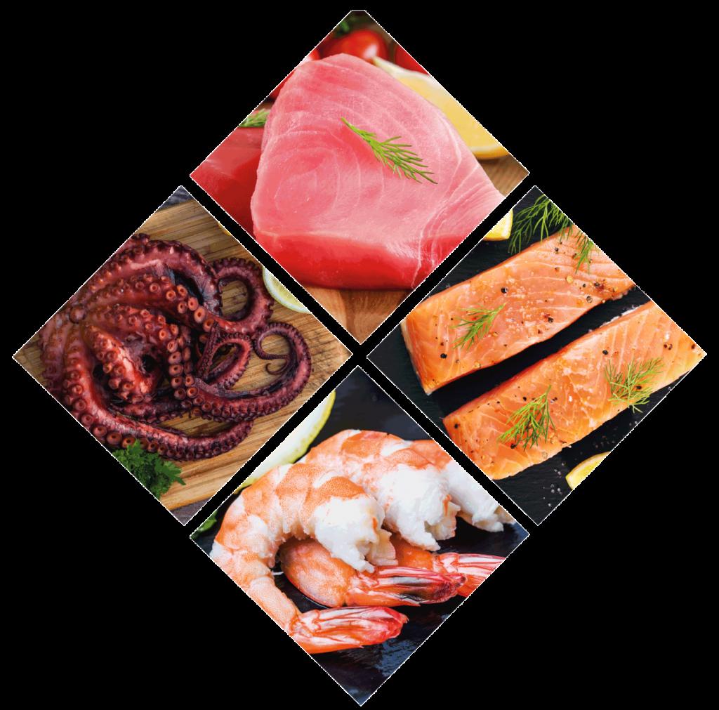 Pescados Y Mariscos Productos Pescados Y Mariscos Pescados Y Mariscos Nuestra Fuerza No Está Solo En La Carne Sino También En Los Pescados Y Mariscos éstos Como Muchos De